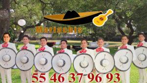 mariachi garibaldi df