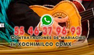 MARIACHIS EN XOCHIMILCO mariachis en xochimilco MARIACHIS EN XOCHIMILCO MARIACHIS EN XOCHIMILCO 3